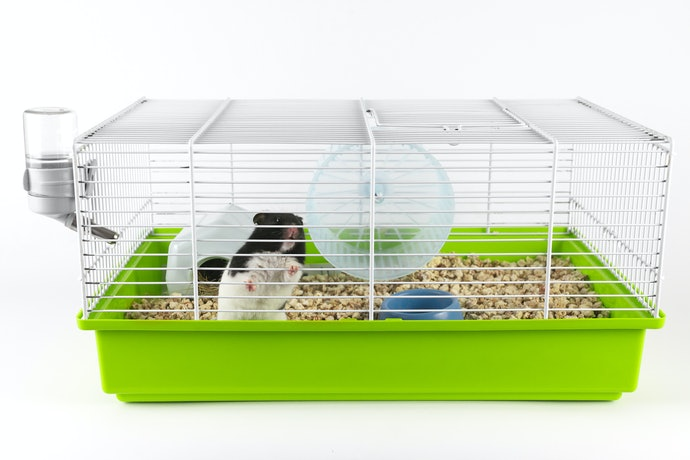 Top 10 Best Cages For Hamster