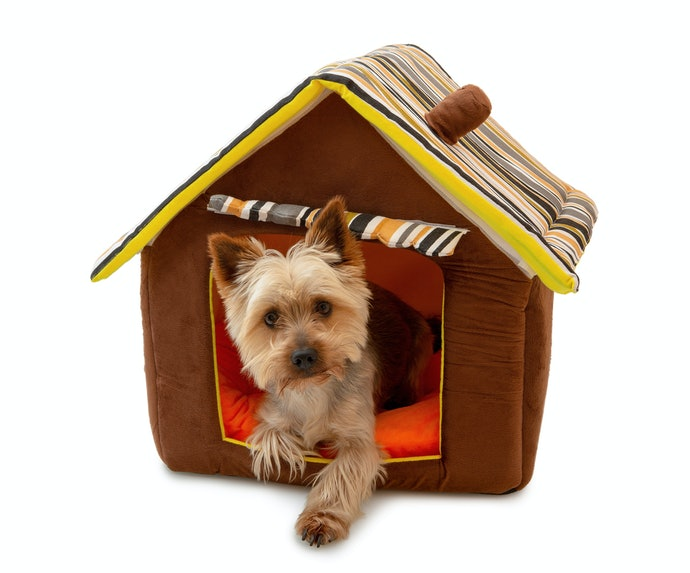 Top 10 Best Houses For Dogs To Buy In 2020
