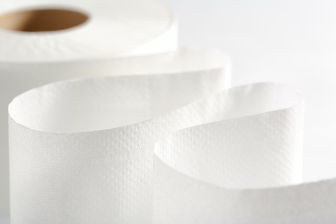 Top 10 Best Hygienic Paper To Buy In 2020 (Snow, Personal And More)