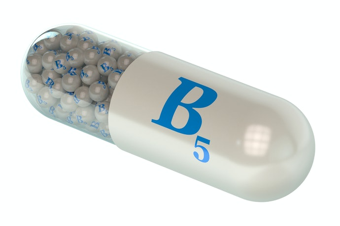 Top 10 Best L-Carnitine In 2020 (Atlhetica, Integralmedica And More)