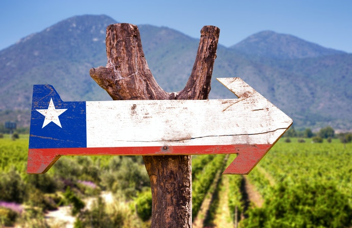 Top 10 Best Malbec Wines To Buy In 2020